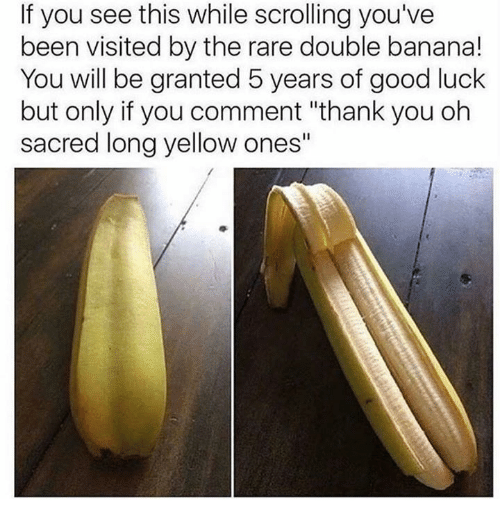 """Rareness: If you see this while scrolling you've  been visited by the rare double banana!  You will be granted 5 years of good luck  but only if you comment """"thank you oh  sacred long yellow ones"""""""