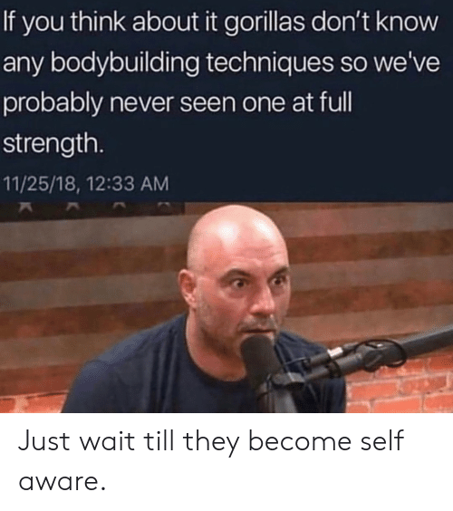 Techniques: If you think about it gorillas don't know  any bodybuilding techniques so we've  probably never seen one at ful  strength.  11/25/18, 12:33 AM Just wait till they become self aware.