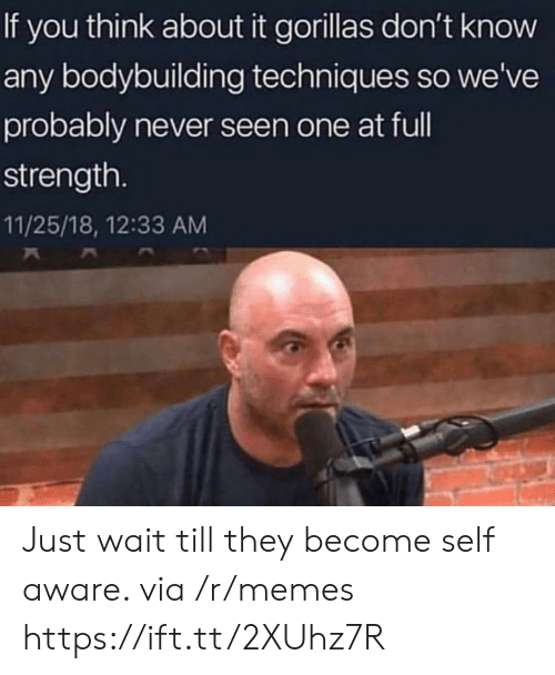 Memes, Bodybuilding, and Never: If you think about it gorillas don't know  any bodybuilding techniques so we've  probably never seen one at ful  strength.  11/25/18, 12:33 AM Just wait till they become self aware. via /r/memes https://ift.tt/2XUhz7R