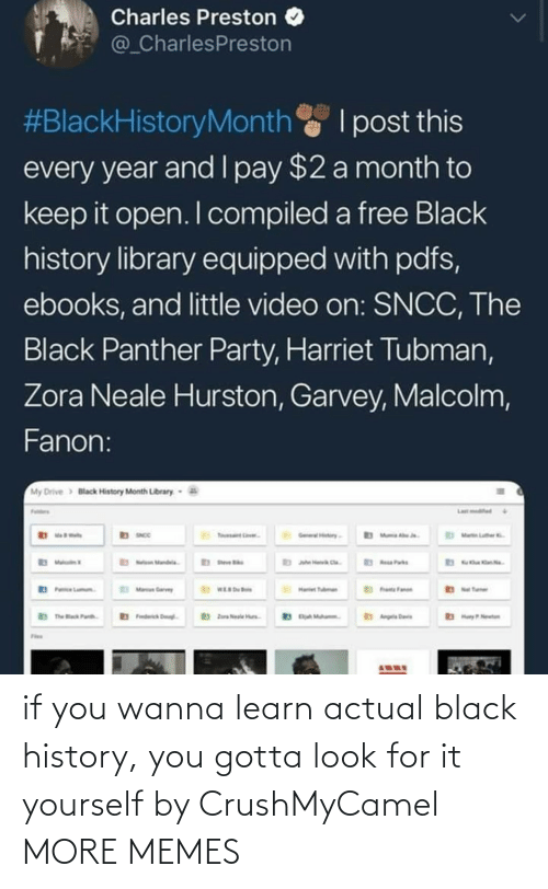 Look For: if you wanna learn actual black history, you gotta look for it yourself by CrushMyCamel MORE MEMES