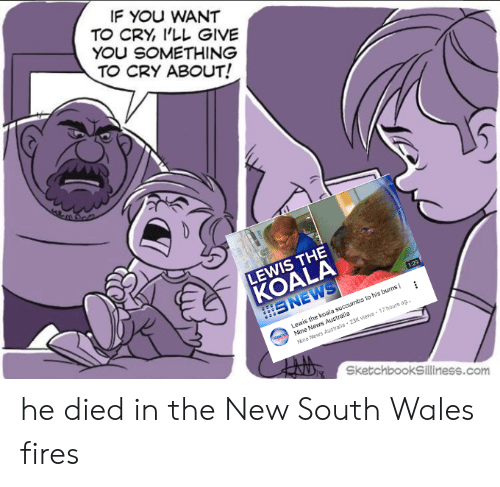 News Australia: IF YOU WANT  TO CRY, I'LL GIVE  YOU SOMETHING  TO CRY ABOUT!  LEWIS THE  KÖALA  SNEWS  1:29  Lewis the koala succumbs to his burns  Mine News Australia  Nine News Australie 23K views 17 hours ag  SketchbookSilliness.com he died in the New South Wales fires