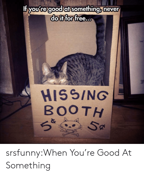 Tumblr, Blog, and Free: If youfregood at something never  doit for free...  HISSING  BOOTH  Sa srsfunny:When You're Good At Something