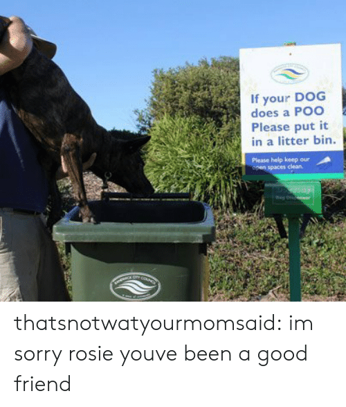 A Good Friend: If your DOG  does a Poo  Please put it  in a litter bin  Please help keep our thatsnotwatyourmomsaid:  im sorry rosie youve been a good friend