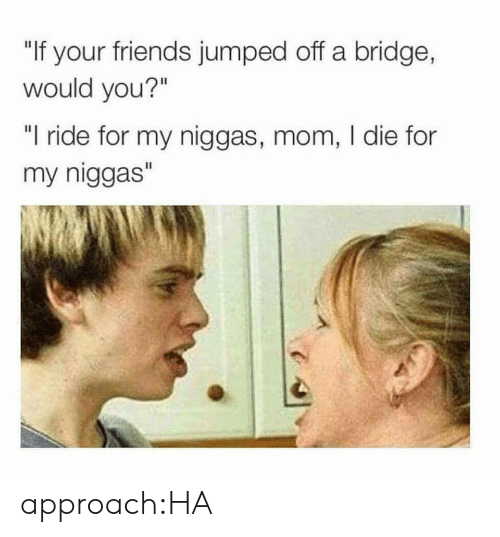 "bridge: ""If your friends jumped off a bridge,  would you?""  ""I ride for my niggas, mom, I die for  my niggas"" approach:HA"