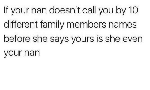 Family Members: If your nan doesn't call you by 10  different family members names  before she says yours is she even  your nan
