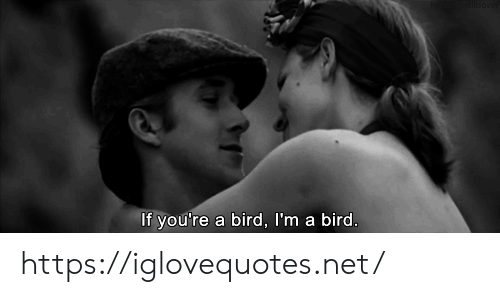 Net, Href, and Youre: If you're  a bird, I'm a bird. https://iglovequotes.net/