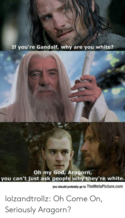 Gandalf, God, and Oh My God: If you're Gandalf, why are you white?  Oh my God, Aragorn,  you can't just ask people why they're white.  you should probably go to TheMetaPicture.com lolzandtrollz:  Oh Come On, Seriously Aragorn?