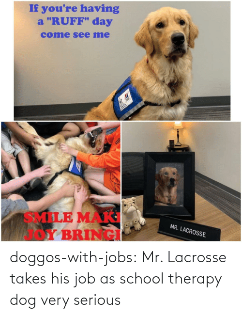"""If Youre: If you're having  a """"RUFF"""" day  come see me  Hils  SMILE MAK  Y BRINGI  MR. LACROSSE doggos-with-jobs:  Mr. Lacrosse takes his job as school therapy dog very serious"""