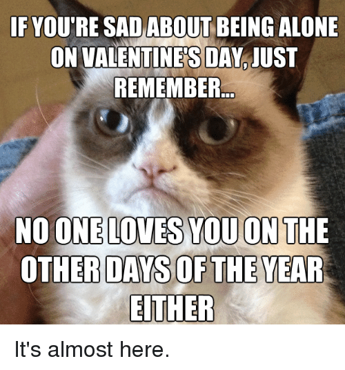 Alone On Valentines Day: IF YOU'RE SAD ABOUT BEING ALONE  ON VALENTINES DAY IUST  REMEMBER  NO ONE LOVES YOU ON THE  OTHER DAYS OF THE YEAR  EITHER It's almost here.