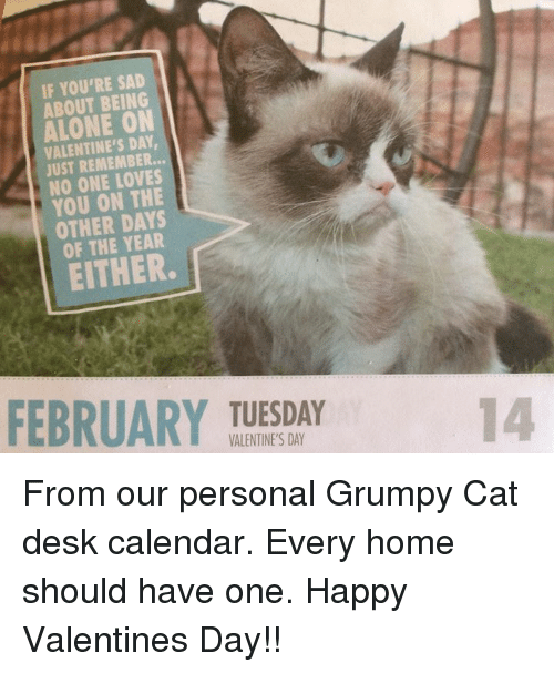 Memes, 🤖, and Grumpy: IF YOU'RE SAD  ABOUT BEING  ON  VALENTINE'S DAY  JUST REMEMBER...  NO ONE YOU ON THE  OTHER DAYS  EITHER.  FEBRUARY TUESDAY  VALENTINE'S DAY From our personal Grumpy Cat desk calendar. Every home should have one. Happy Valentines Day!!