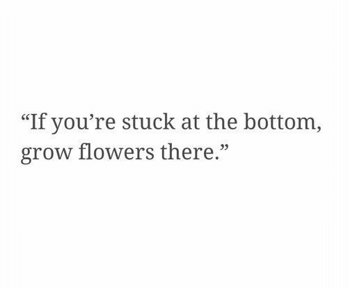 """Flowers, Grow, and Youre: """"If you're stuck at the bottom,  grow flowers there."""""""
