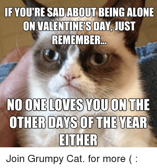 Alone On Valentines Day: IF YOUTRE SAD ABOUT BEING ALONE  ON VALENTINES DAY IUST  REMEMBER  NO ONE LOVES YOU ON THE  OTHER DAYS OF THE YEAR  EITHER Join Grumpy Cat. for more ( :