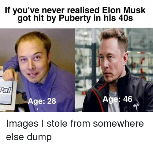 Images, Puberty, and Never: If you've never realised Elon Musk  got hit by Puberty in his 40s  Age: 28 Images I stole from somewhere else dump