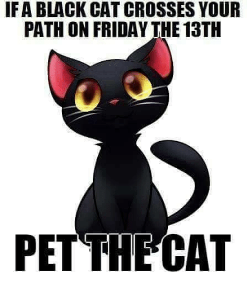 Friday, Memes, and Black: IFA BLACK CAT CROSSES YOUR  PATH ON FRIDAY THE 13TH  PET THECAT