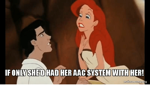 aac: IFONLYSHED HAD AAC  SYSTEMWITHHERI  makeameme:or