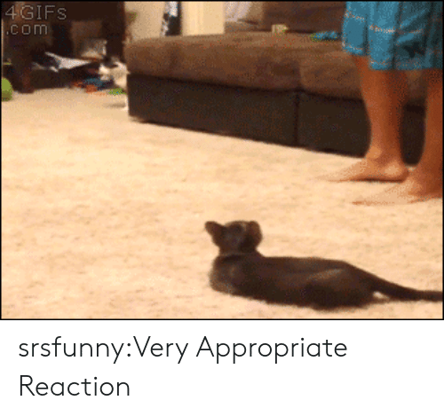 ifs: IFS  com srsfunny:Very Appropriate Reaction