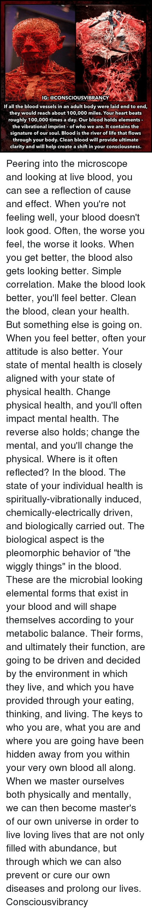 "Peering: IG: @CONSCIOUSVIBRANCY  If all the blood vessels in an adult body were laid end to end,  they would reach about 100,000 miles. Your heart beats  roughly 100,000 times a day. Our blood holds elements  the vibrational imprint of who we are. It contains the  signature of our soul. Blood is the river of life that flows  through your body. Clean blood will provide ultimate  clarity and will help create a shift in your consciousness. Peering into the microscope and looking at live blood, you can see a reflection of cause and effect. When you're not feeling well, your blood doesn't look good. Often, the worse you feel, the worse it looks. When you get better, the blood also gets looking better. Simple correlation. Make the blood look better, you'll feel better. Clean the blood, clean your health. But something else is going on. When you feel better, often your attitude is also better. Your state of mental health is closely aligned with your state of physical health. Change physical health, and you'll often impact mental health. The reverse also holds; change the mental, and you'll change the physical. Where is it often reflected? In the blood. The state of your individual health is spiritually-vibrationally induced, chemically-electrically driven, and biologically carried out. The biological aspect is the pleomorphic behavior of ""the wiggly things"" in the blood. These are the microbial looking elemental forms that exist in your blood and will shape themselves according to your metabolic balance. Their forms, and ultimately their function, are going to be driven and decided by the environment in which they live, and which you have provided through your eating, thinking, and living. The keys to who you are, what you are and where you are going have been hidden away from you within your very own blood all along. When we master ourselves both physically and mentally, we can then become master's of our own universe in order to live loving lives that are not only filled with abundance, but through which we can also prevent or cure our own diseases and prolong our lives. Consciousvibrancy"