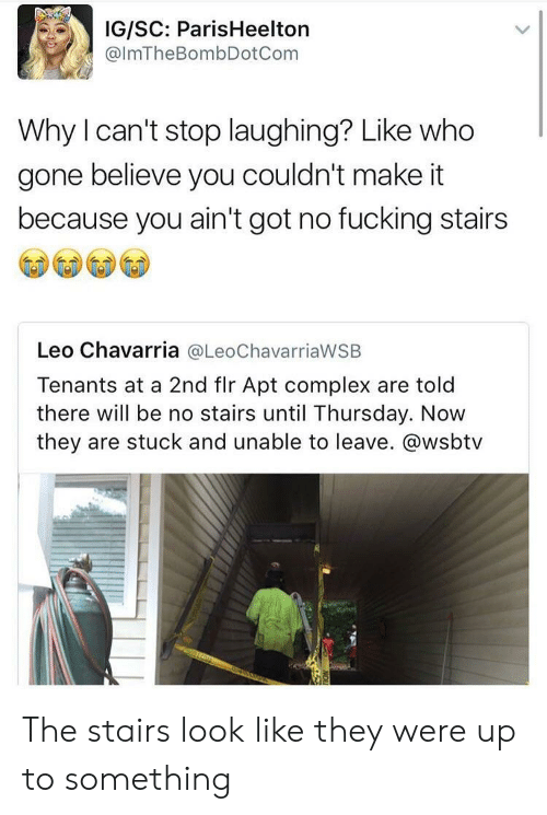 Leos: IG/SC: ParisHeelton  @lmTheBombDotCom  Why I can't stop laughing? Like who  gone believe you couldn't make it  because you ain't got no fucking stairs  Leo Chavarria @LeoChavarriaWSB  Tenants at a 2nd flr Apt complex are told  there will be no stairs until Thursday. Now  they are stuck and unable to leave. @wsbtv The stairs look like they were up to something