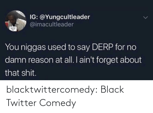 niggas: IG: @Yungcultleader  @imacultleader  You niggas used to say DERP for no  damn reason at all. I ain't forget about  that shit. blacktwittercomedy:  Black Twitter Comedy