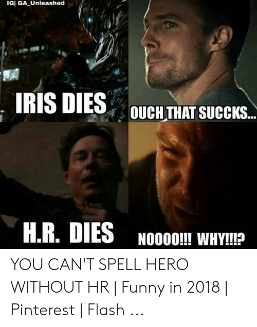 Funny, Pinterest, and Iris: IGI GA Unleashed  IRIS DIES  OUCH THAT SUCCKS..  H.R. DIES  NOO0O!!! WHY!!? YOU CAN'T SPELL HERO WITHOUT HR | Funny in 2018 | Pinterest | Flash ...