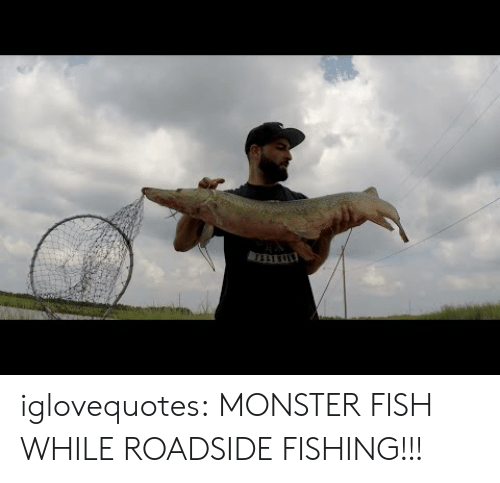 Fishing: iglovequotes: MONSTER FISH WHILE ROADSIDE FISHING!!!
