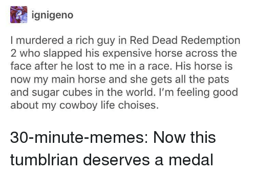 Life, Memes, and Tumblr: ignigeno  I murdered a rich guy in Red Dead Redemption  2 who slapped his expensive horse across the  face after he lost to me in a race. His horse is  now my main horse and she gets all the pats  and sugar cubes in the world. I'm feeling good  about my cowboy life choises. 30-minute-memes:  Now this tumblrian deserves a medal