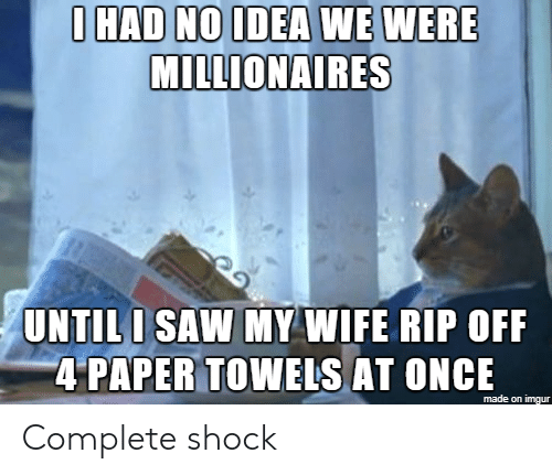 Rip Off: IHAD NOIDEA WE WERE  MILLIONAIRES  UNTILI SAW MY WIFE RIP OFF  4 PAPER TOWEIS AT ONCE  made on imgur Complete shock