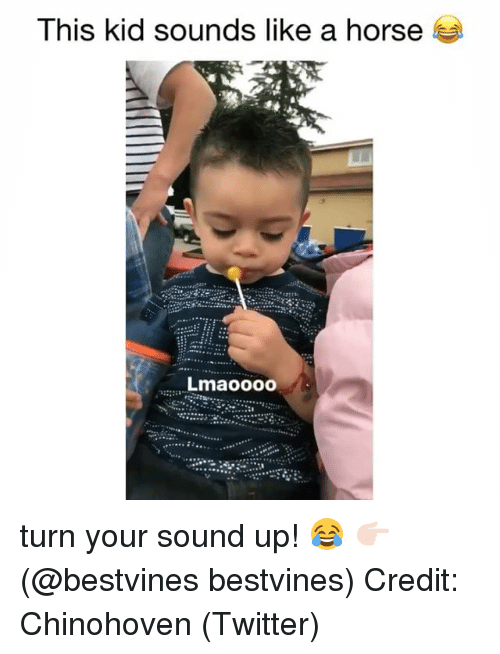 Memes, Twitter, and Horse: Ihis kid sounds like a horse  Lmaoooo  2983 turn your sound up! 😂 👉🏻(@bestvines bestvines) Credit: Chinohoven (Twitter)