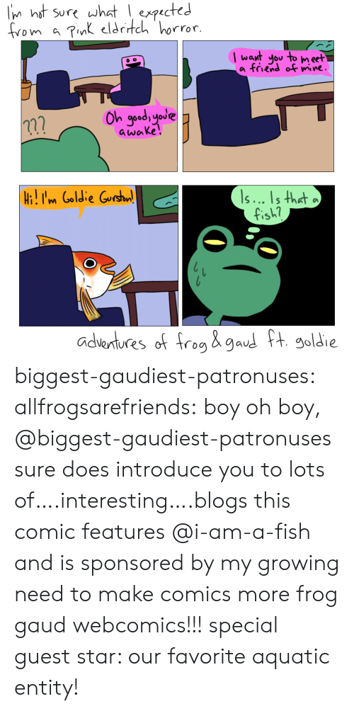 Soldie: Iin hat sure what I expucted  from a cdtch horror  Iwant ou to n ect  a friend o wine  าวิ  awake!  s... ls that  i.im Goldie  fish  adentures of f  Soldie biggest-gaudiest-patronuses:  allfrogsarefriends: boy oh boy, @biggest-gaudiest-patronuses sure does introduce you to lots of….interesting….blogs this comic features @i-am-a-fish and is sponsored by my growing need to make comics  more frog  gaud webcomics!!!special guest star: our favorite aquatic entity!
