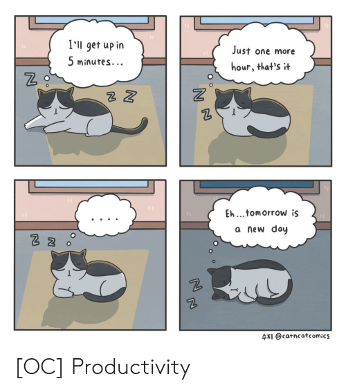 Tomorrow, Comics, and One: I'll get up in  5 minutes.  Just one more  hour, that's t  2  Eh...tomorrow is  a new doy  수지 @catncat comics [OC] Productivity