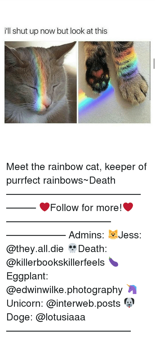 interweb: ill shut up now but look at this Meet the rainbow cat, keeper of purrfect rainbows~Death —————————————–——— ❤️Follow for more!❤️ ——————————–—————— Admins: 🐱Jess: @they.all.die 💀Death: @killerbookskillerfeels 🍆Eggplant: @edwinwilke.photography 🦄Unicorn: @interweb.posts 🐶Doge: @lotusiaaa ——————————–——