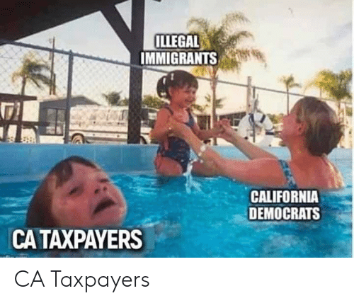 California, Illegal, and  Democrats: ILLEGAL  IMMIGRANTS  CALIFORNIA  DEMOCRATS  CA TAXPAYERS CA Taxpayers