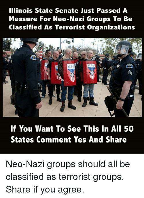 alie: Illinois State Senate Just Passed A  Messure For Neo-Nazi Groups To Be  Classified As Terrorist Organizations  E5D  If You Want To See This In AlI 50  States Comment Yes And Share Neo-Nazi groups should all be classified as terrorist groups. Share if you agree.