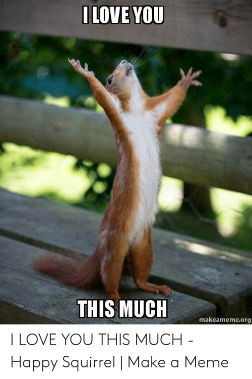 Love, Meme, and I Love You: ILOVE YOU  THIS MUCH  makeameme.org I LOVE YOU THIS MUCH - Happy Squirrel   Make a Meme
