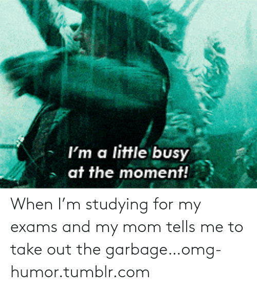 Mom Tells: I'm a little busy  at the moment! When I'm studying for my exams and my mom tells me to take out the garbage…omg-humor.tumblr.com