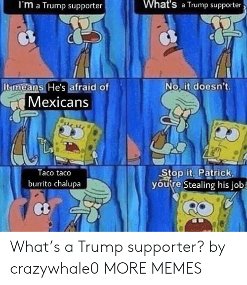 Trump Supporter: I'm a Trump supporter  What's a Trump supporter  Itmeans He's afraid of  No.it doesn't  Mexicans  Taco taco  burrito chalupa  Stop it. Patrick  youre Stealing his job What's a Trump supporter? by crazywhale0 MORE MEMES