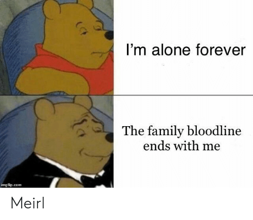 Bloodline: I'm alone forever  The family bloodline  ends with me  imgflip.com Meirl
