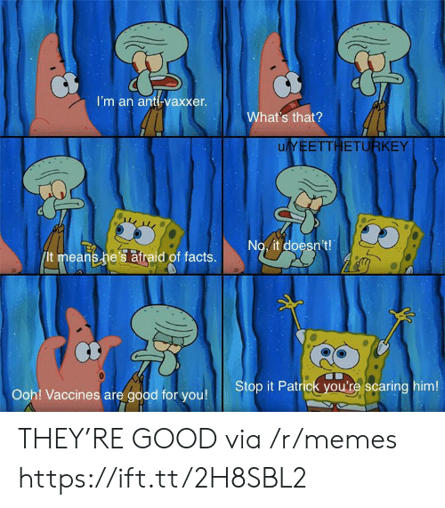Facts, Good for You, and Memes: I'm an anti-vaxxer.  What's that?  uYEETTHETURKEY  No. it doesn't!  It means he's atraid of facts.  Stop it Patrick you're scaring him!  Ooh! Vaccines are good for you! THEY'RE GOOD via /r/memes https://ift.tt/2H8SBL2