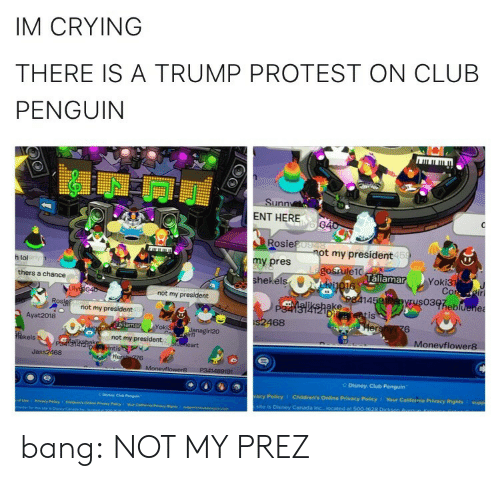 California: IM CRYING  THERE IS A TRUMP PROTEST ON CLUB  PENGUIN  Sunn  ENT HERE  Rosie  my pres  hekéls  t my president  15  h lol  laliamar  Yoki3  thers a chance  not my president  14  03heb  ake  Di  not my president  is  Ayat 2018  468  6  oki3  Monevflower8  kels  not my president  Jass2468  Disney Club Penguin  acy Policy  Children's Online Privacy Policy 1 Your California Privacy Rights I supp  site is Disney Caneda bang:  NOT MY PREZ