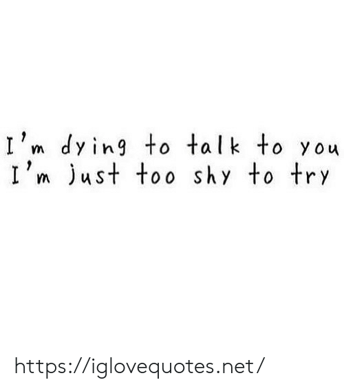 Net, You, and Shy: I'm dying to talk to you  I'm ust too shy to try https://iglovequotes.net/