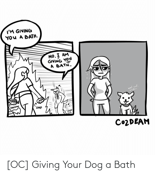 soap: I'M GIVING  YOU A BATH.  NO. I AM  GIVING YOU  A BATH.  woof woof,  bitches.  SHAMPOO  SOAP  CO2DEAM [OC] Giving Your Dog a Bath