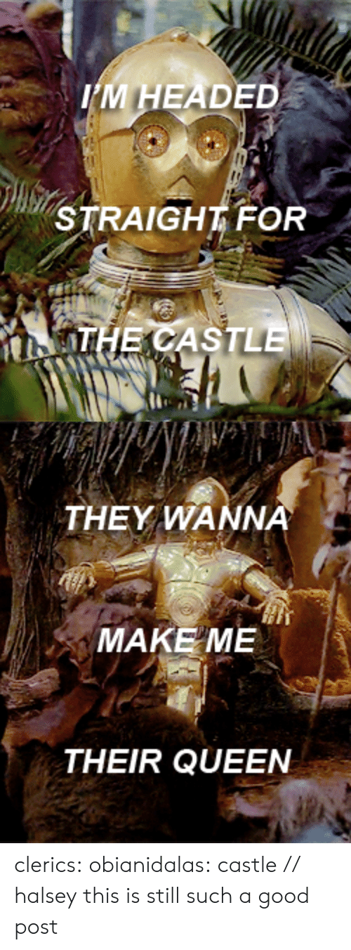 Target, Tumblr, and Queen: IM HEADED  STRAIGHT FOR  OHE CASTLE   THEY WANNA  MAKE ME  THEIR QUEEN clerics: obianidalas:  castle // halsey  this is still such a good post