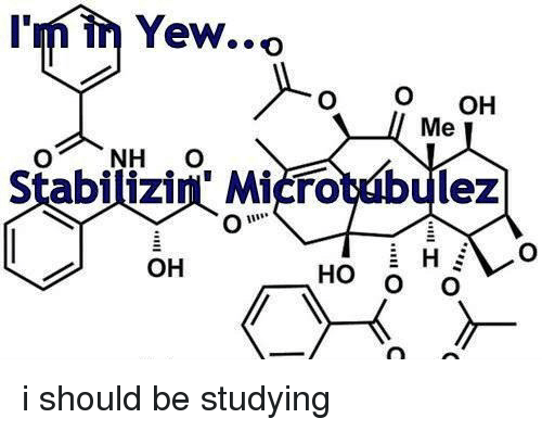 Oh Ho: I'm in Yew..o  O OH  Stabilizin Microtubulez  OH  HO O O <p>i should be studying</p>