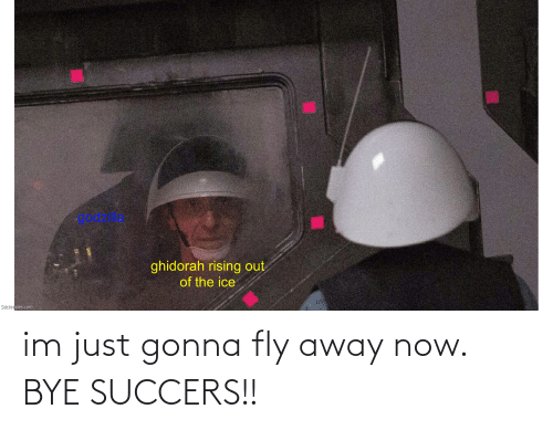fly: im just gonna fly away now. BYE SUCCERS!!
