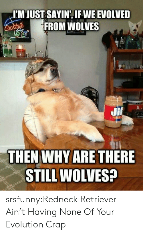Redneck, Tumblr, and Blog: I'M JUST SAYIN, IF WE EVOLVED  FROM WOLVES  st  THEN WHY ARE THERE  STILL WOLVES? srsfunny:Redneck Retriever Ain't Having None Of Your Evolution Crap