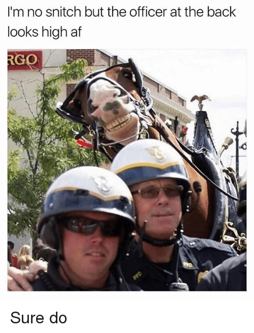 No Snitching: I'm no snitch but the officer at the back  looks high af  RGO Sure do