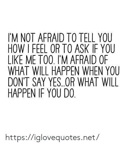 Or What: IM NOT AFRAID TO TELL YOU  HOW I FEEL OR TO ASK IF YOU  LIKE ME TO0. I'M AFRAID OF  WHAT WILL HAPPEN WHEN YOU  DONT SAY YES..OR WHAT WILL  HAPPEN IF YOU DO https://iglovequotes.net/