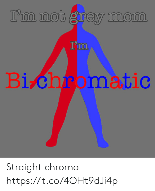 Grey, Mom, and Straight: I'm not grey mom  I'm  Bi chr matic Straight chromo https://t.co/4OHt9dJi4p