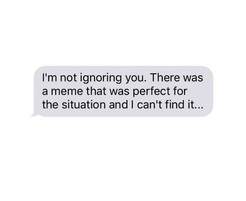 Ignoring You: I'm not ignoring you. There was  a meme that was perfect for  the situation and I can't find it...