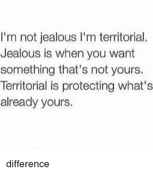 Jealous, Memes, and 🤖: I'm not jealous I'm territorial  Jealous is when you want  something that's not yours.  Territorial is protecting what's  already yours. difference
